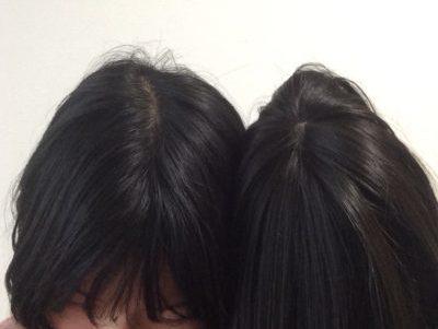 メープルラテミディ地毛と比較
