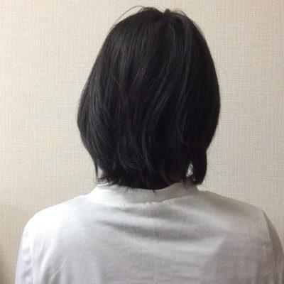 地毛の長さはこれくらい